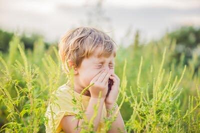 alergia objawy