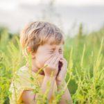objawy alergii